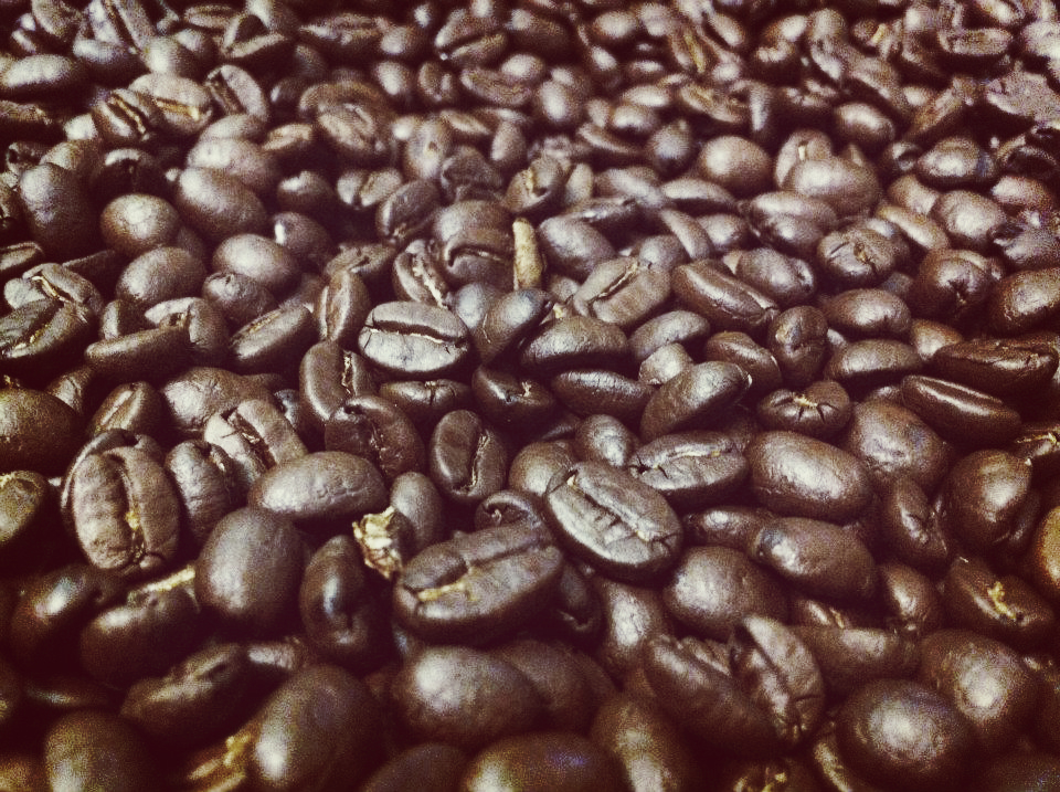 Our beans after roasting.