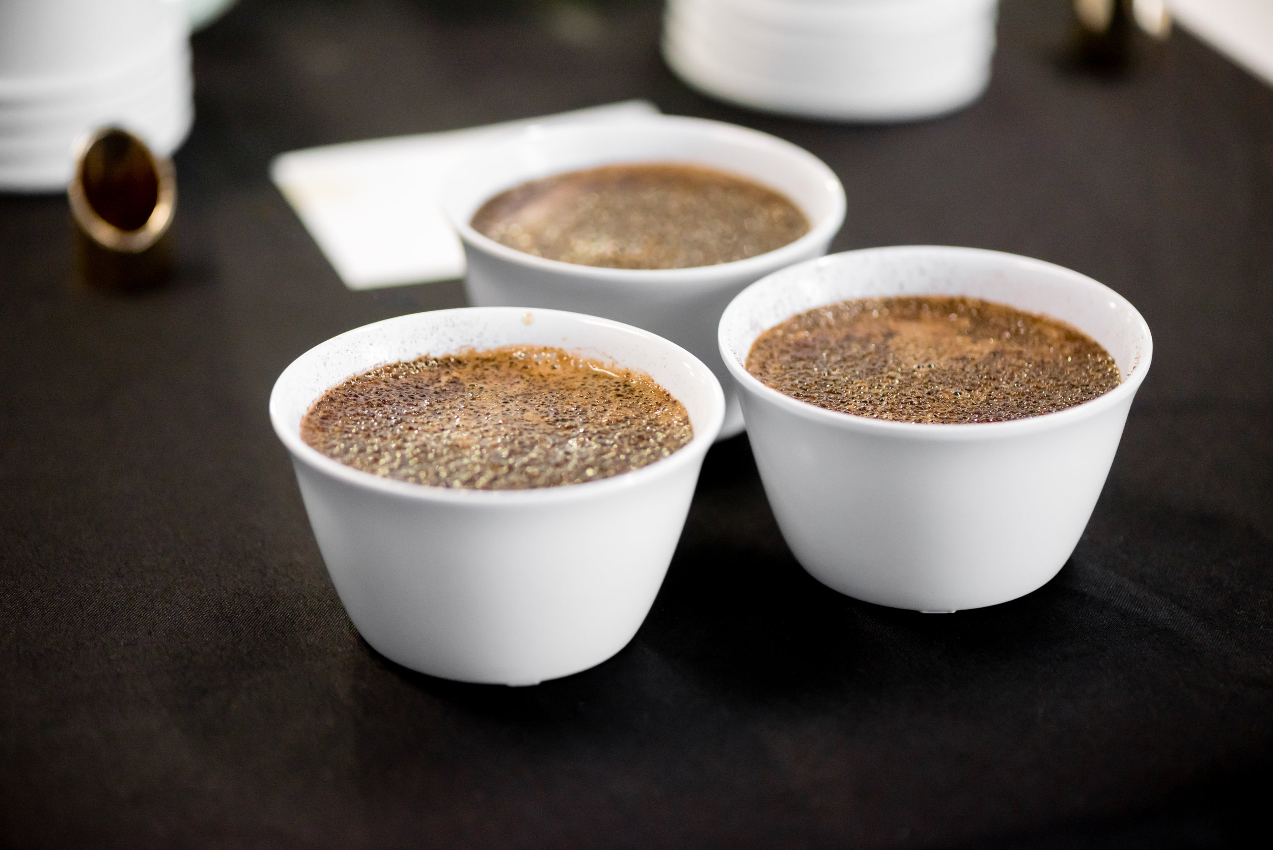 Cupping + Tasting - Mosaic Photo 19.jpg