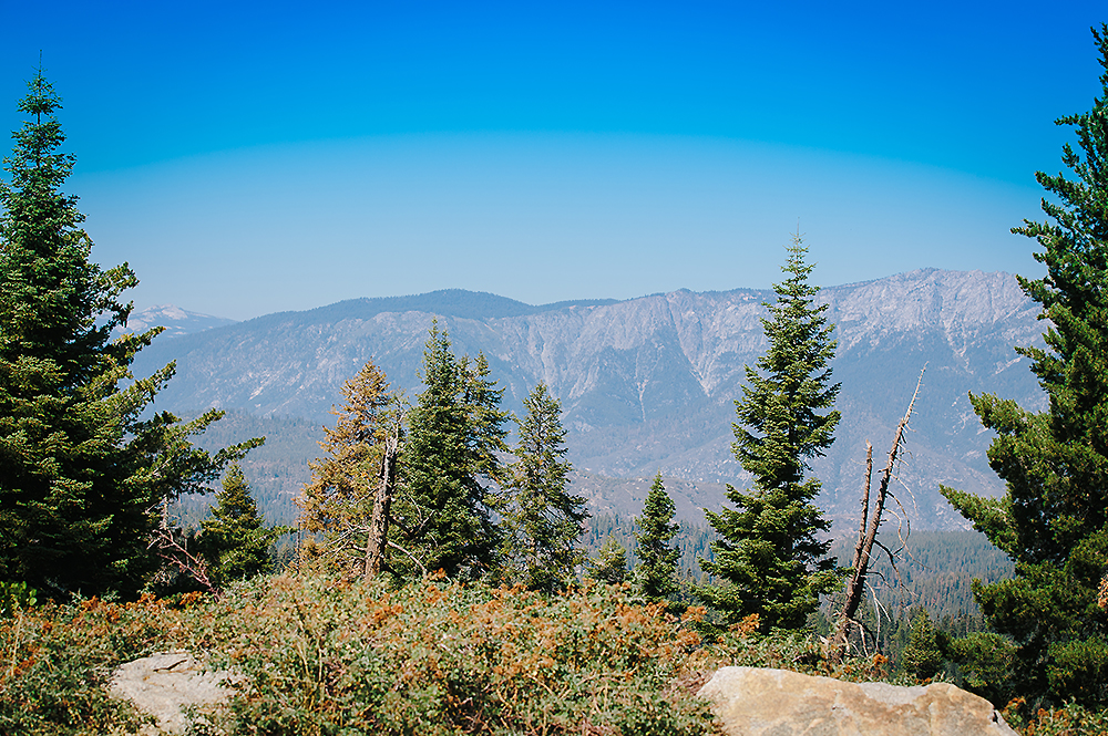 Sequoia National Park Road Trip 20