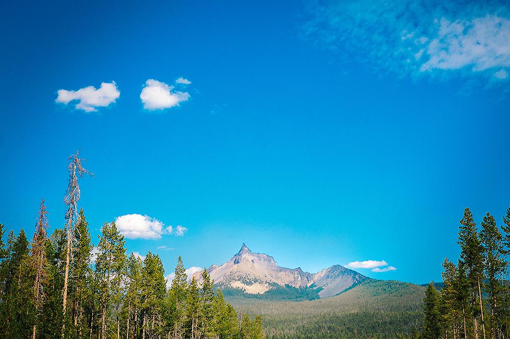 Oregon Road Trip Photographer 19