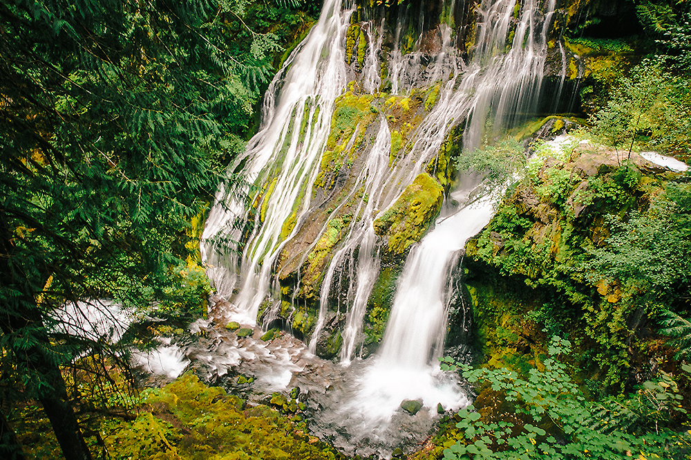 Oregon Road Trip Photographer 52