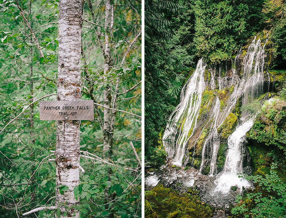 Oregon Road Trip Photographer 55