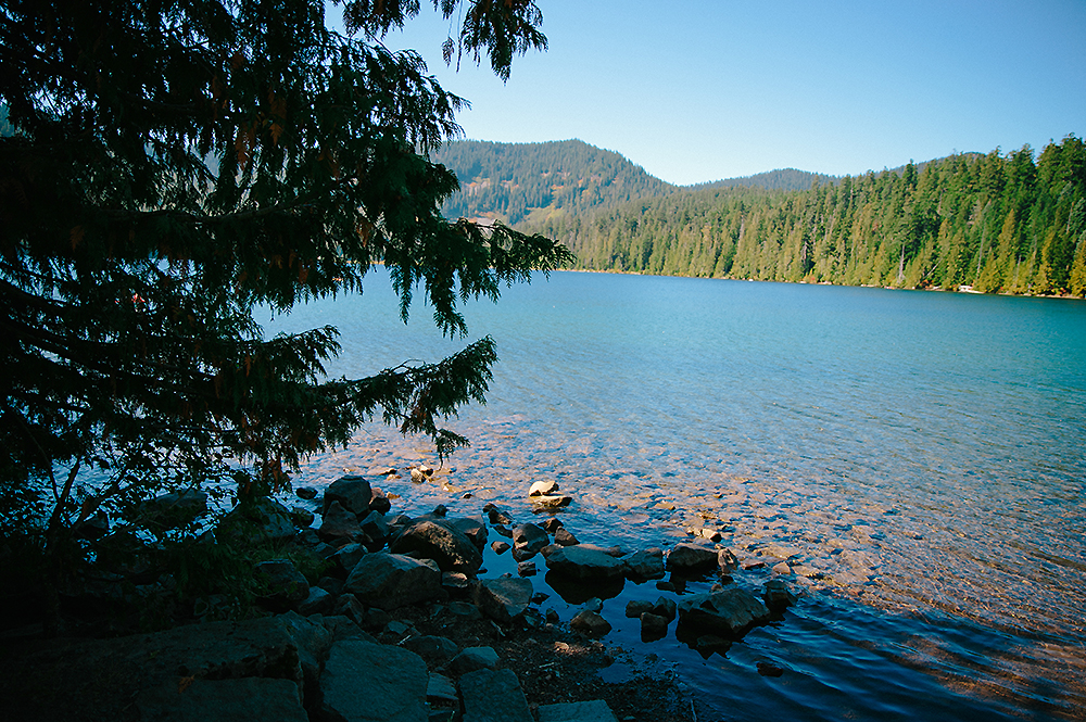Oregon Road Trip Photographer 64