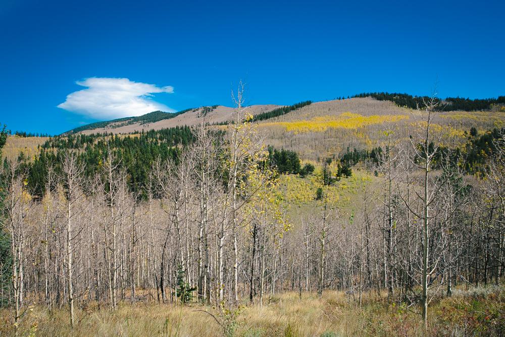 Colorado Road Trip0001.jpg