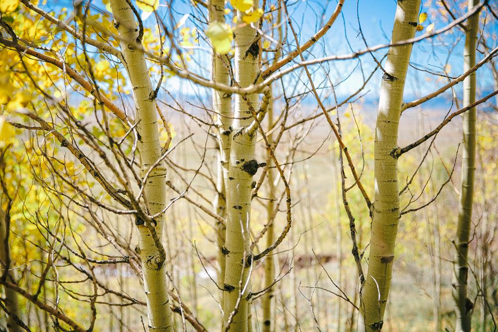 Colorado Road Trip0009.jpg