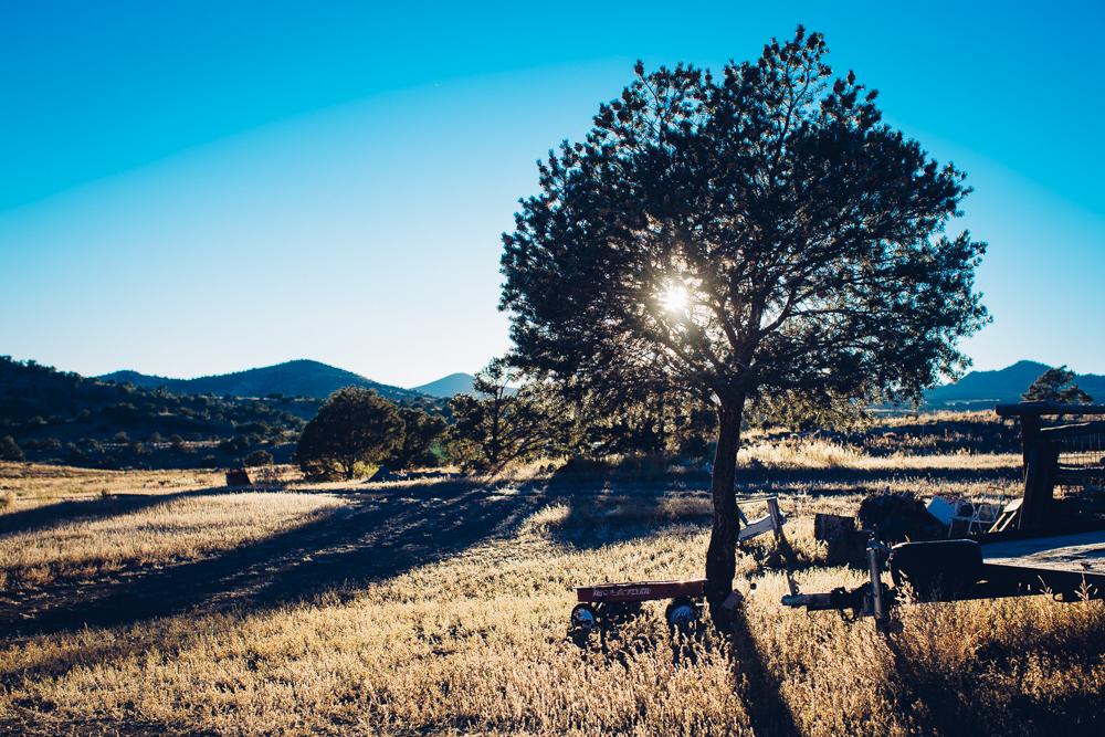Colorado Road Trip0046.jpg