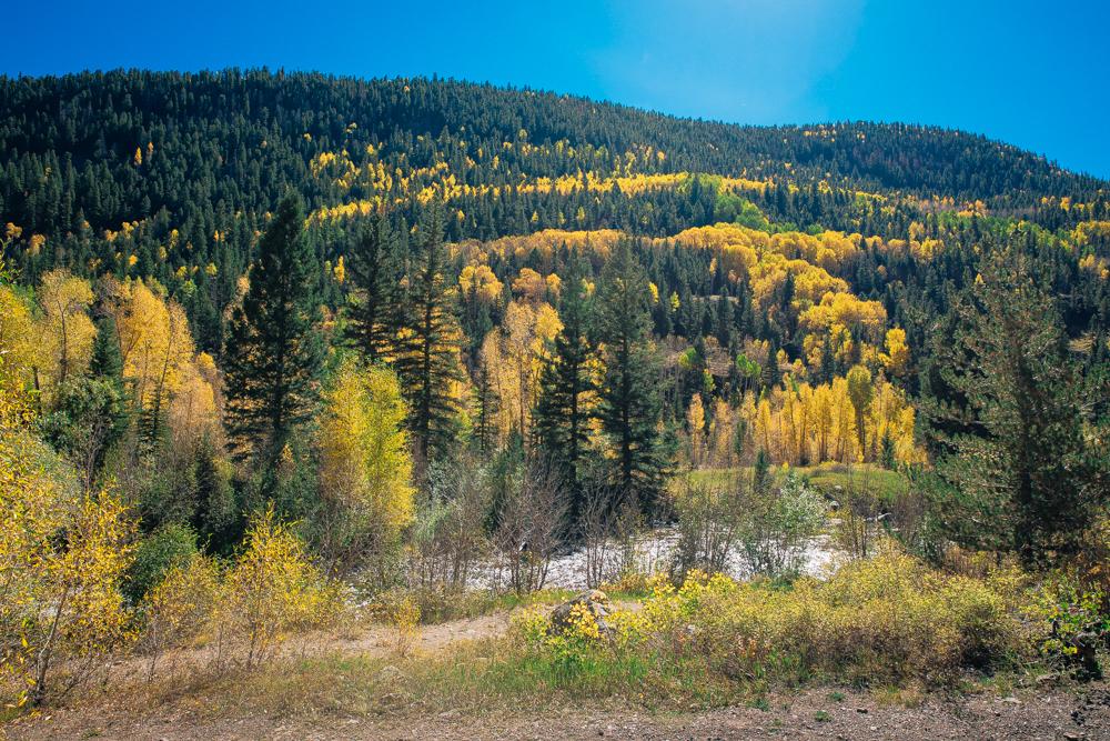 Colorado Road Trip0087.jpg