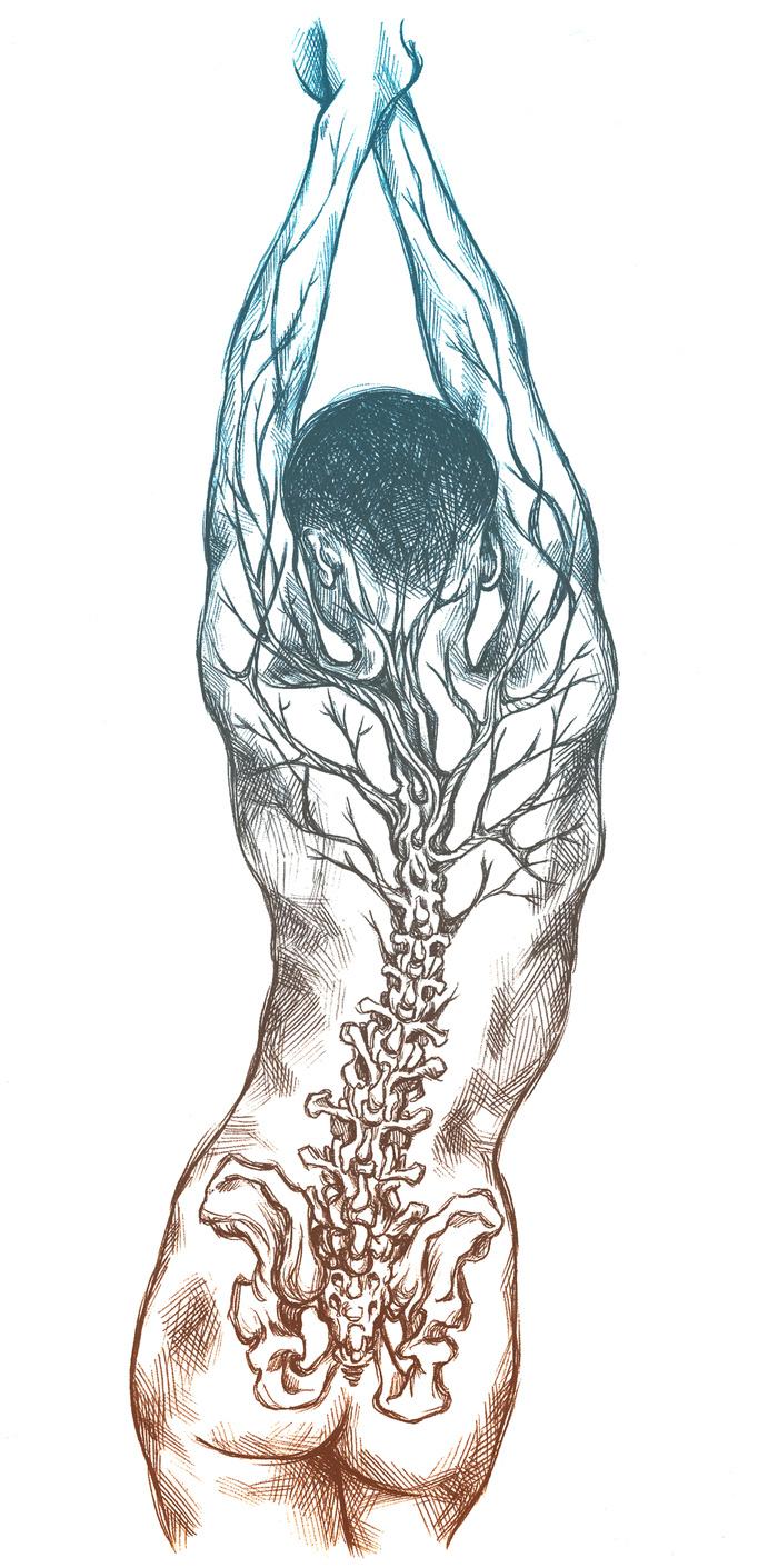 tree-spine-canvas.jpg
