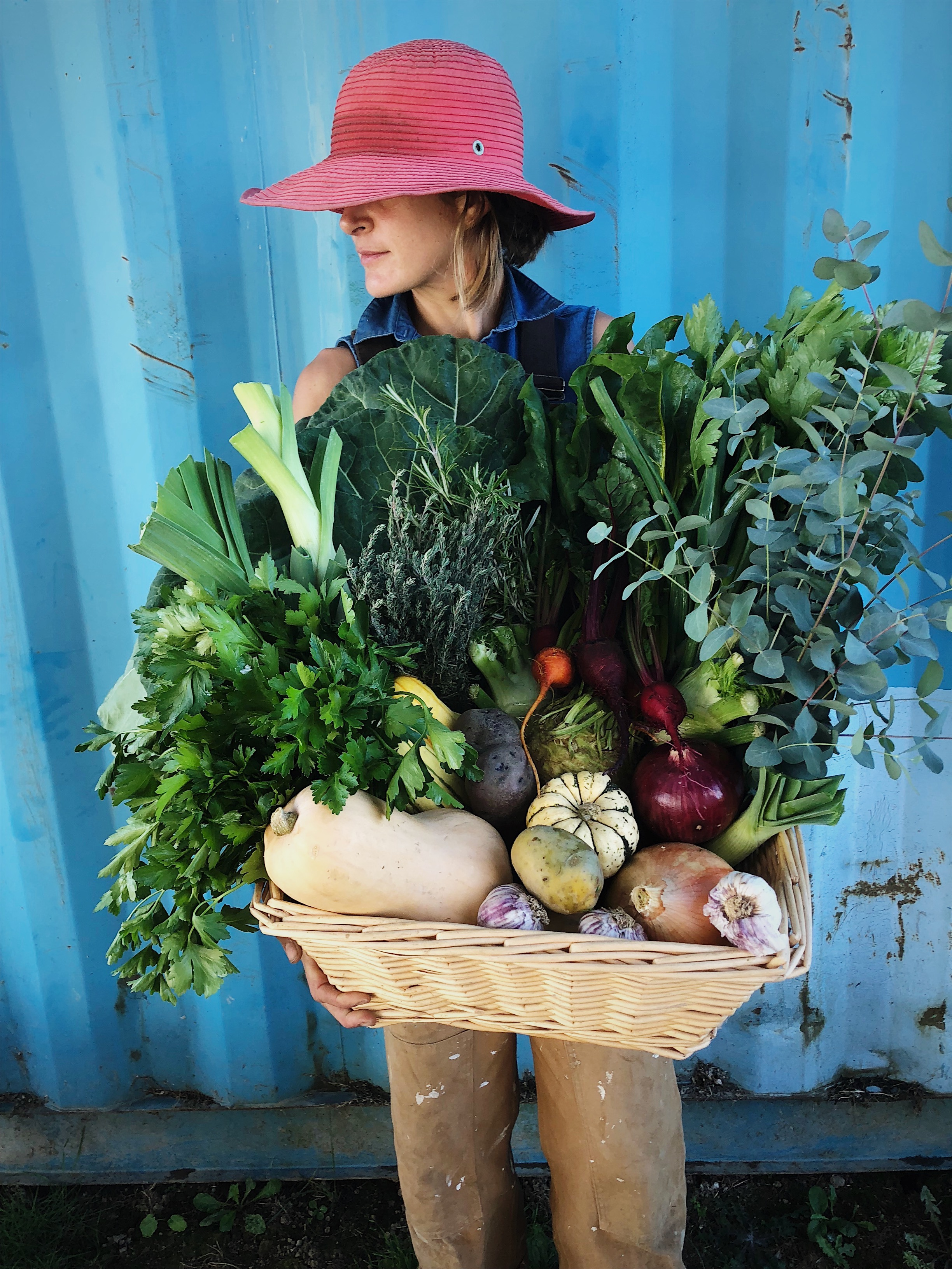 ABOUT OUR VEGETABLES - SIGN UP FOR OUR WEEKLY VEGETABLE LIST EMAIL.