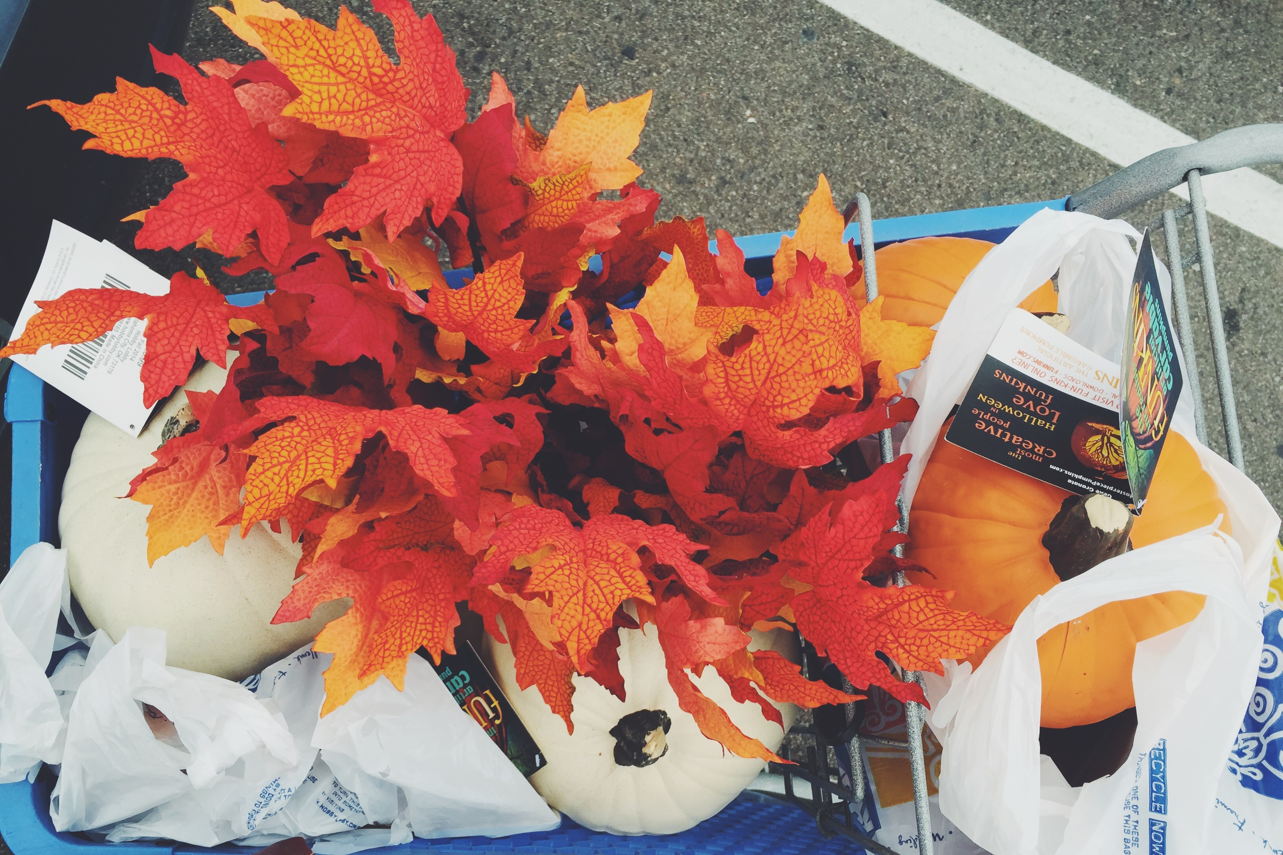 Fall shopping for baby shower | finicky designs