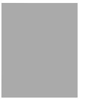 Apple logo in gray