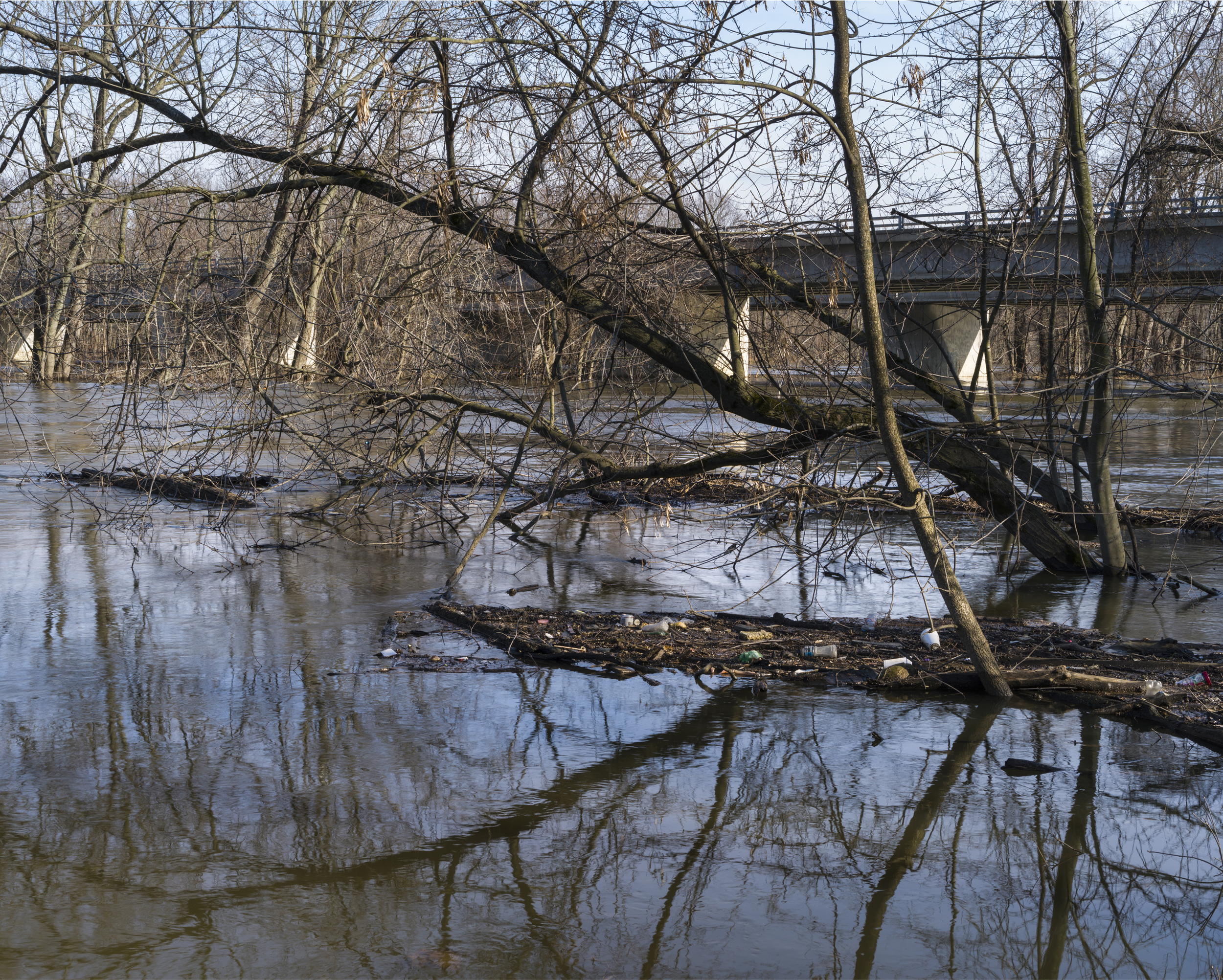 Flood water debris during the spring snow melt. Grand River at M45 in Allendale, MI  2014