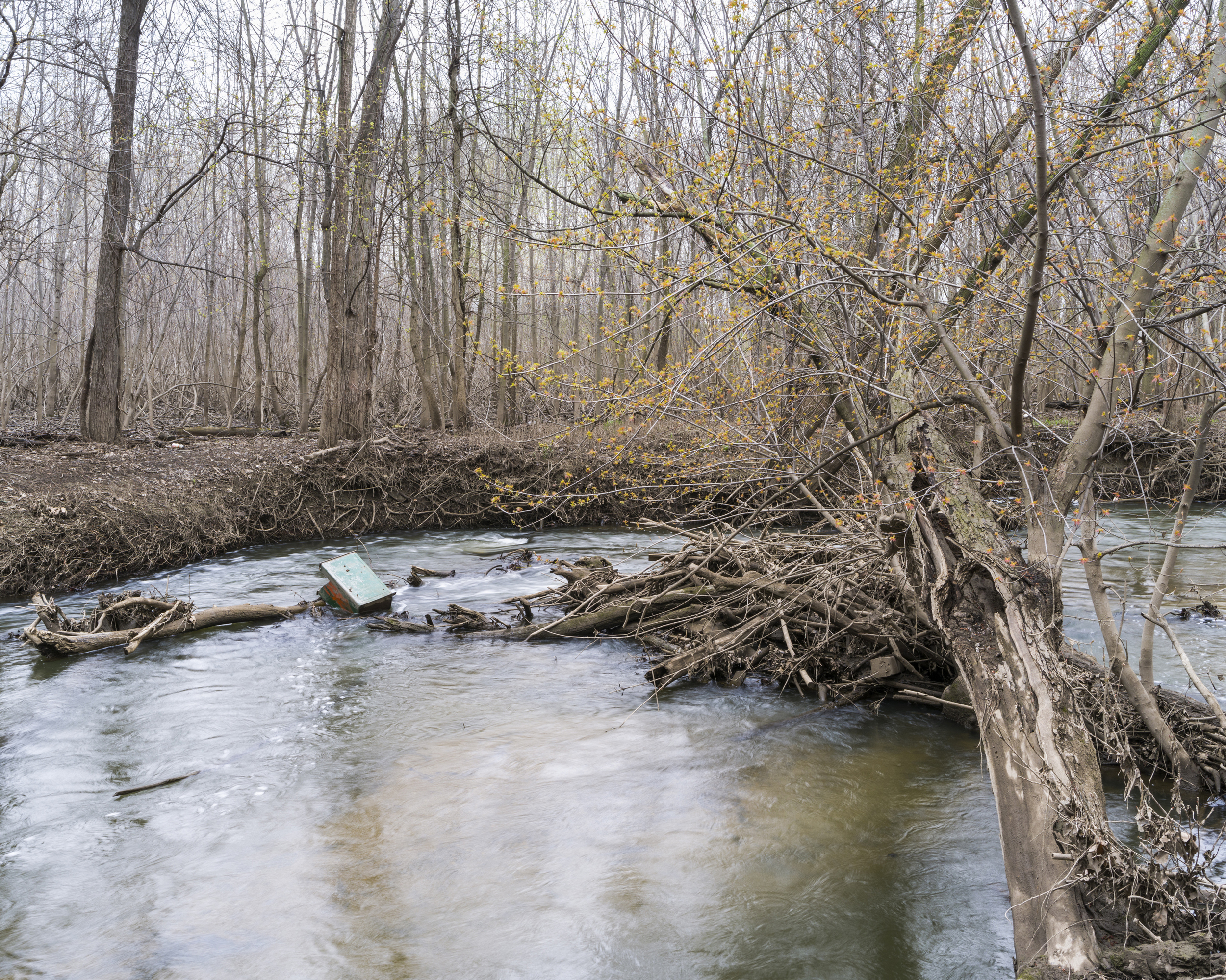 Early spring along Buck Creek in Grandville, MI. 2014