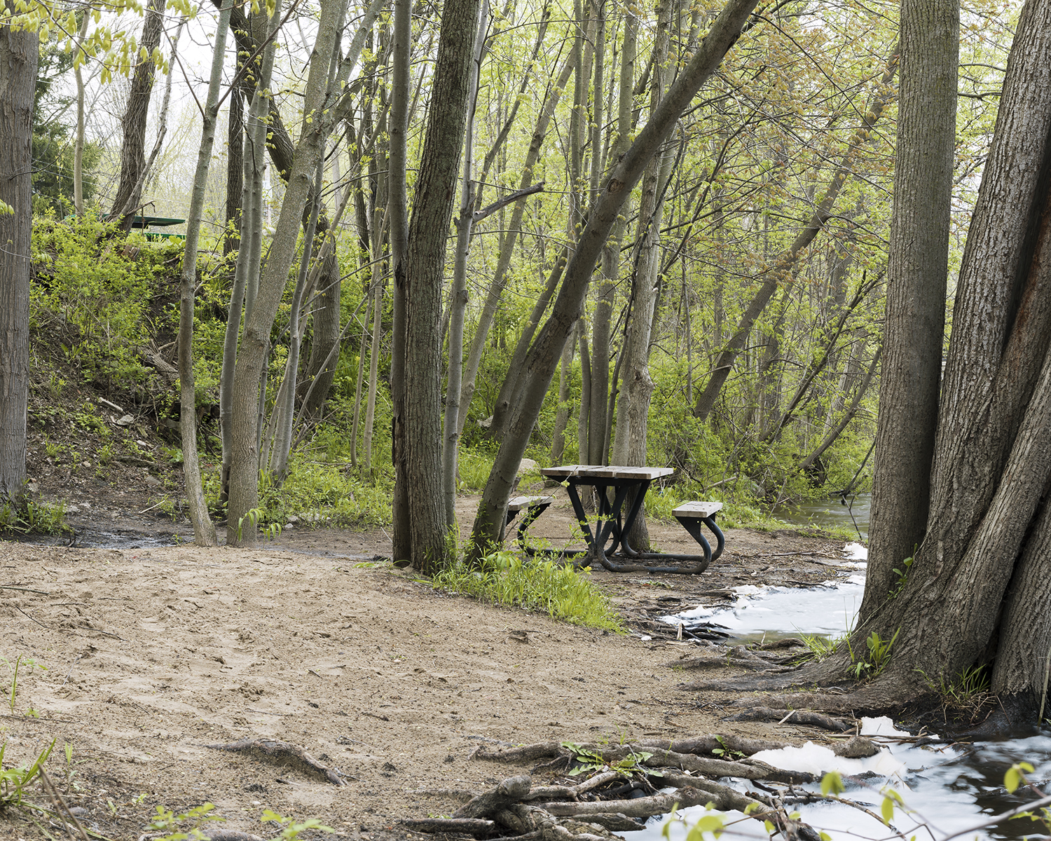 Picnic table along the Rouge River. 2014