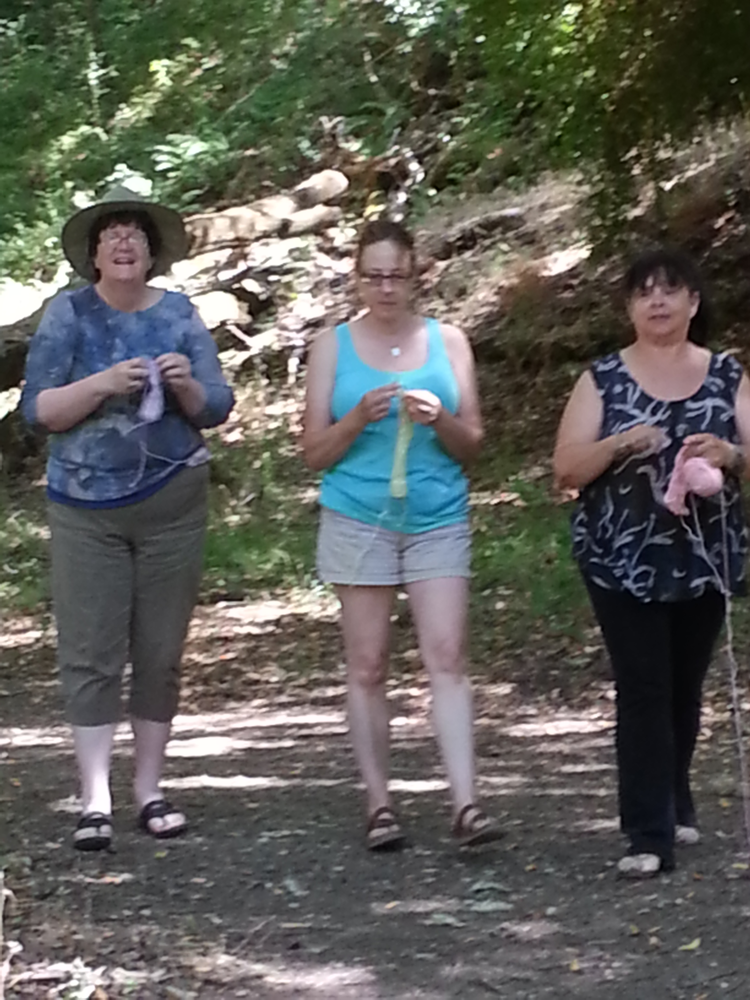 The Marin Gals loving the forest as they walk and knit.