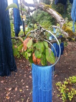 My lace weight Merino/silk hung to dry.