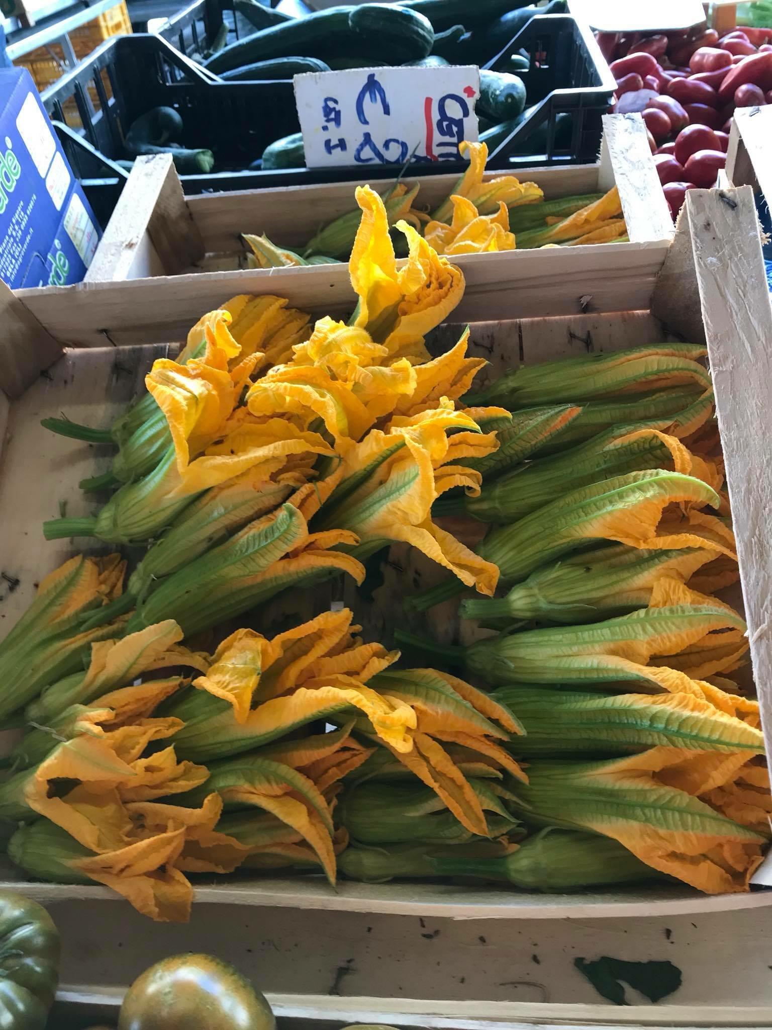 Fiori dei zucchini before….