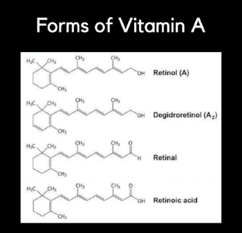 Forms of Vit A.png
