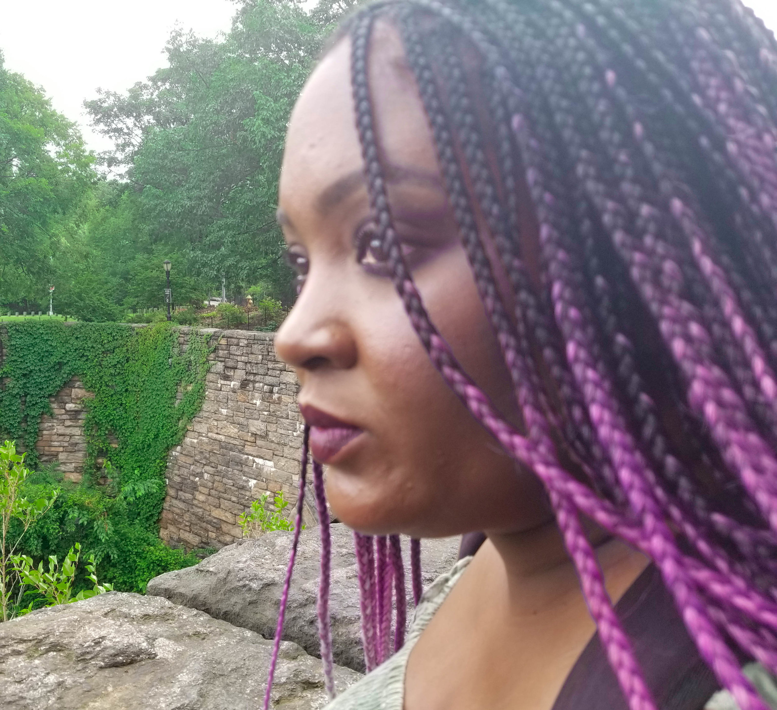 pink and black ombre micro braids