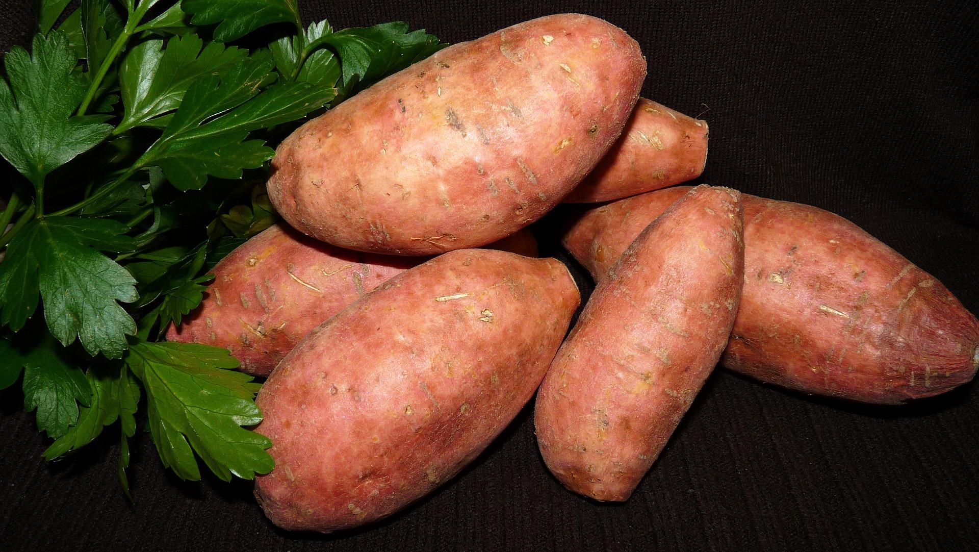 vegetable-3559112_1920.jpg