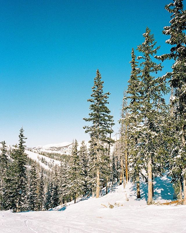 A bit of lovely from our Co. trip last month ❄️🏔.@salidacolorado @monarchmountain @thefindlab.  #monarchmountain #salidacolorado #thefindlab #contaxg2 #filmphotography #slopes #texasfilmphotographer #coloradofilmphotographer #salidaphotographer