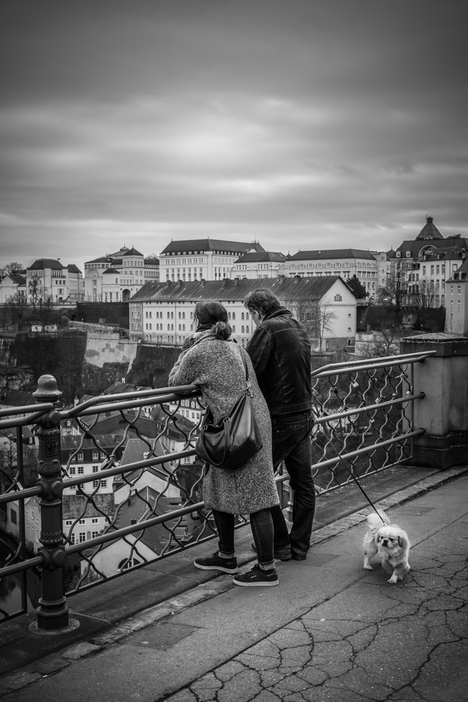 Street Photographer in Luxembourg | Catalin Burlacu Photography | www.ishootcolors.com | Walking the dog | Luxembourg view