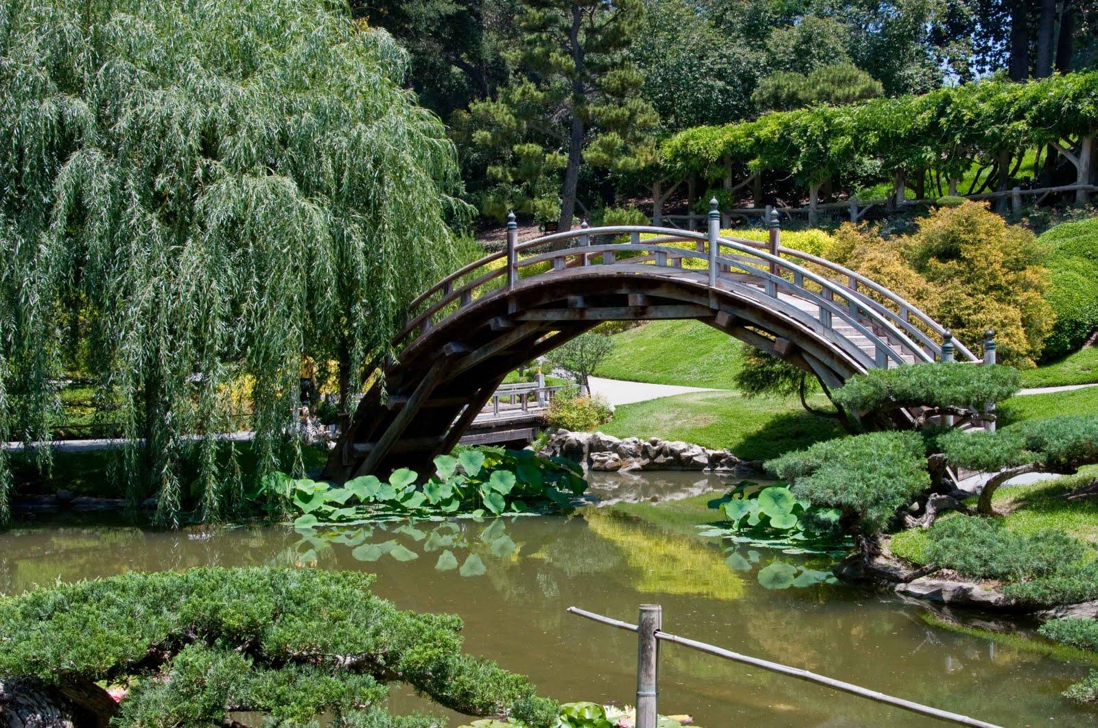 The Mildred E. Mathias Botanical Garden
