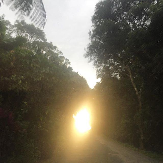 Entering the light, driving in byron.