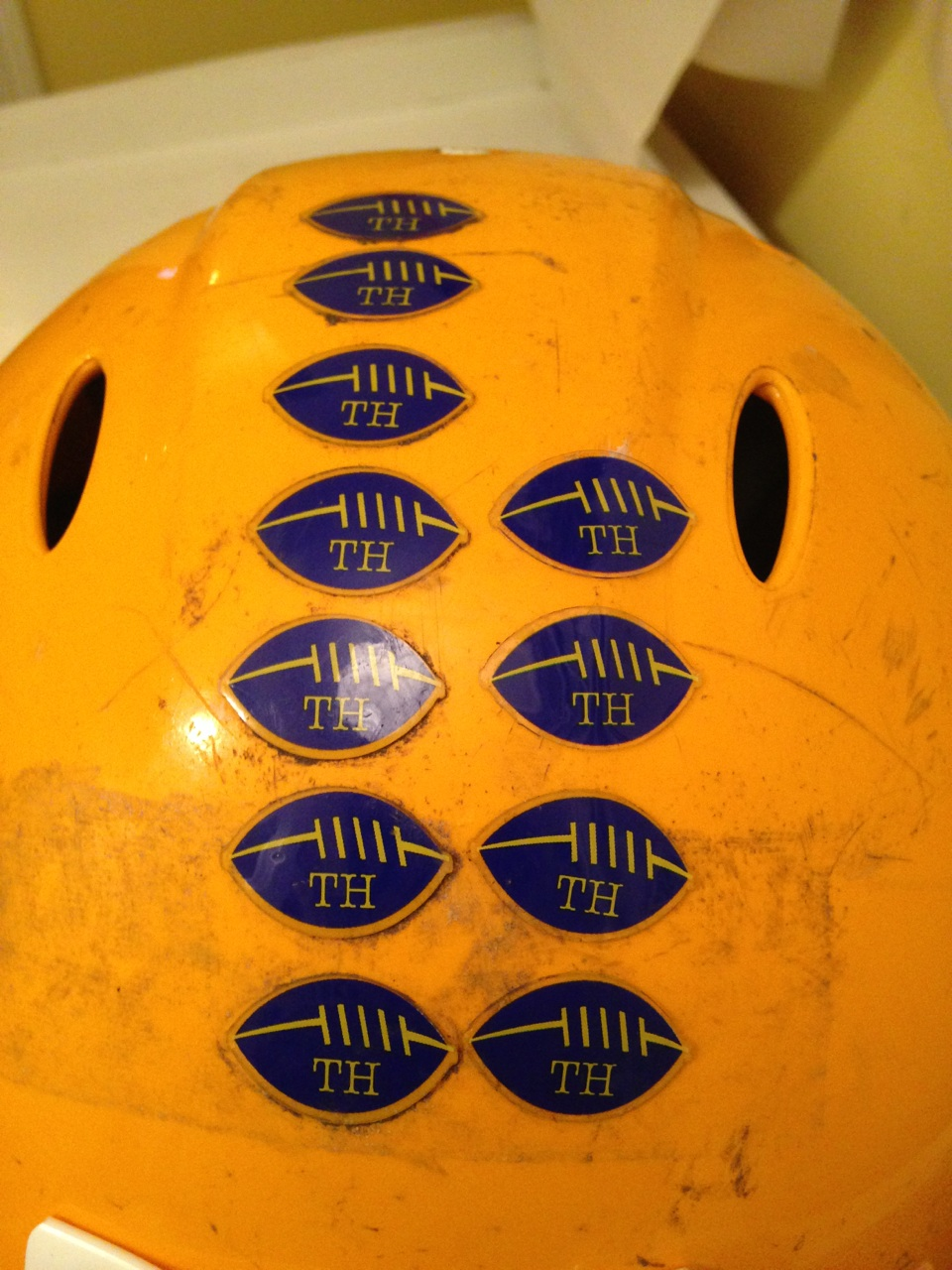 TH Helmet Stickers