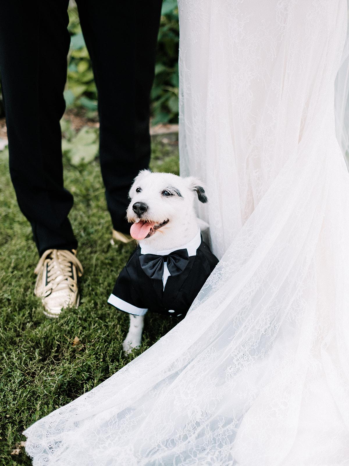 Billy_Genna_wedding-506.jpg