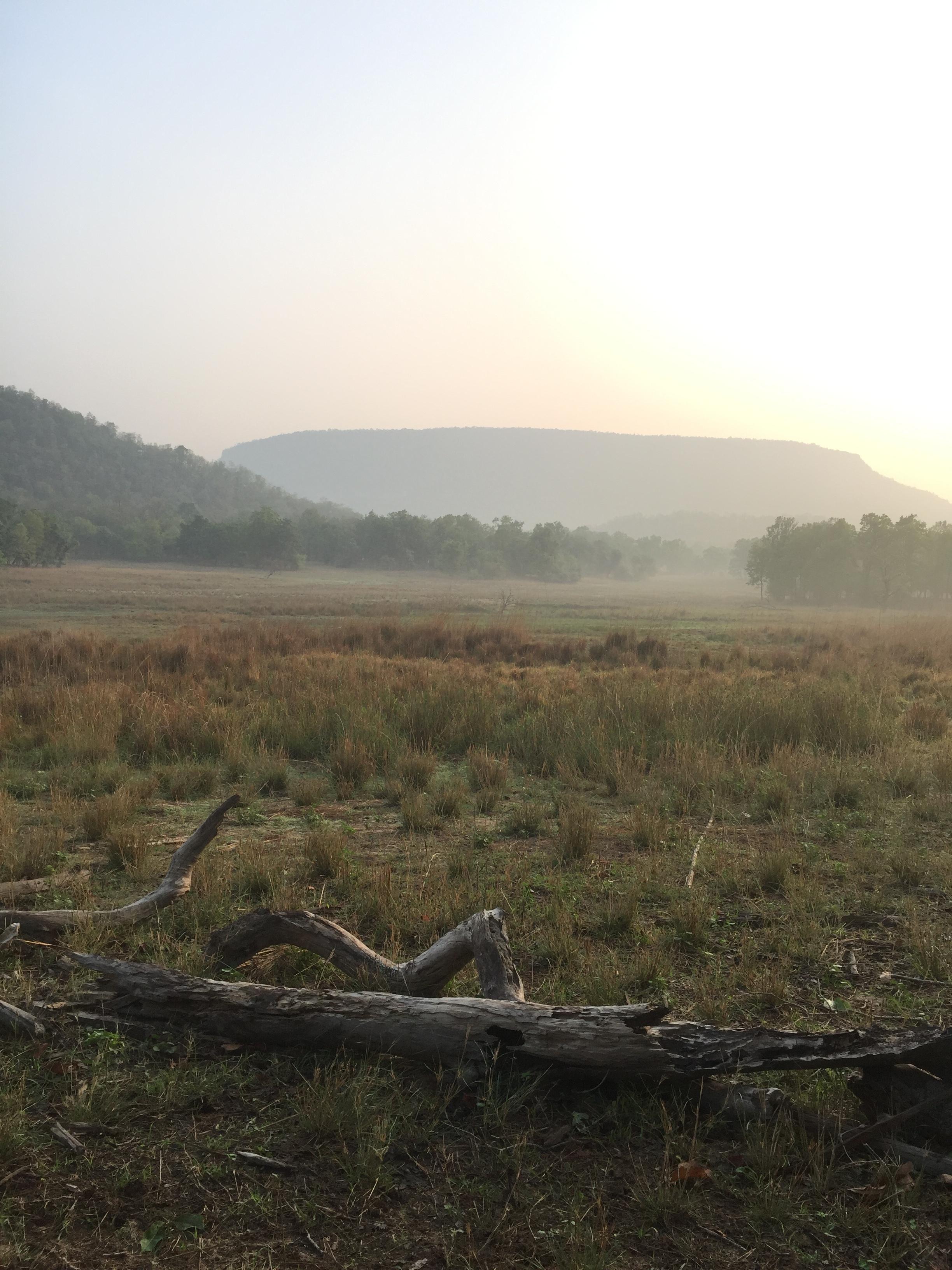 Bandhavgarh National Park at Day Break, Magdi Zone