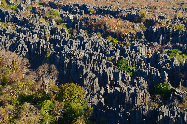 Limestone formations in Tsingy de Bemaraha National Park.