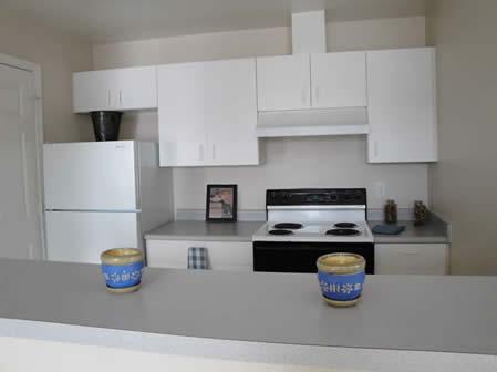 Kitchen with bar.jpg