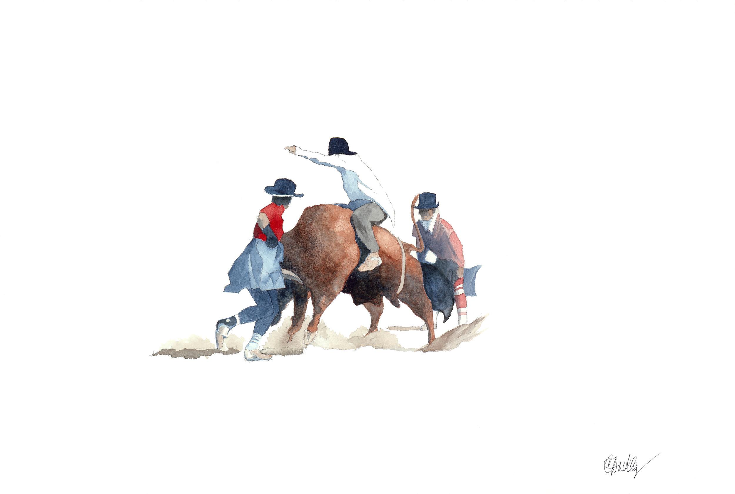 Rodeo Scenes   #3