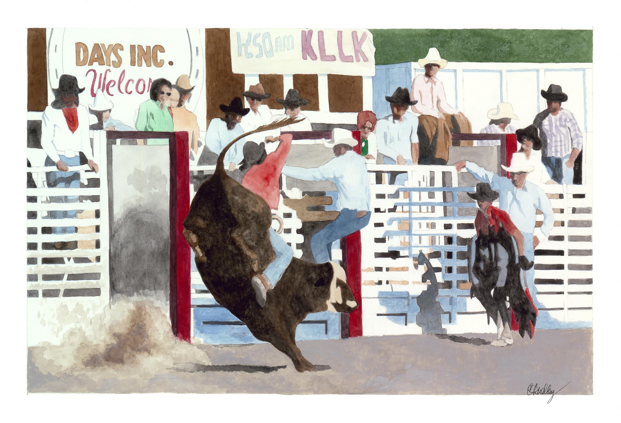 Rodeo Scenes   #5