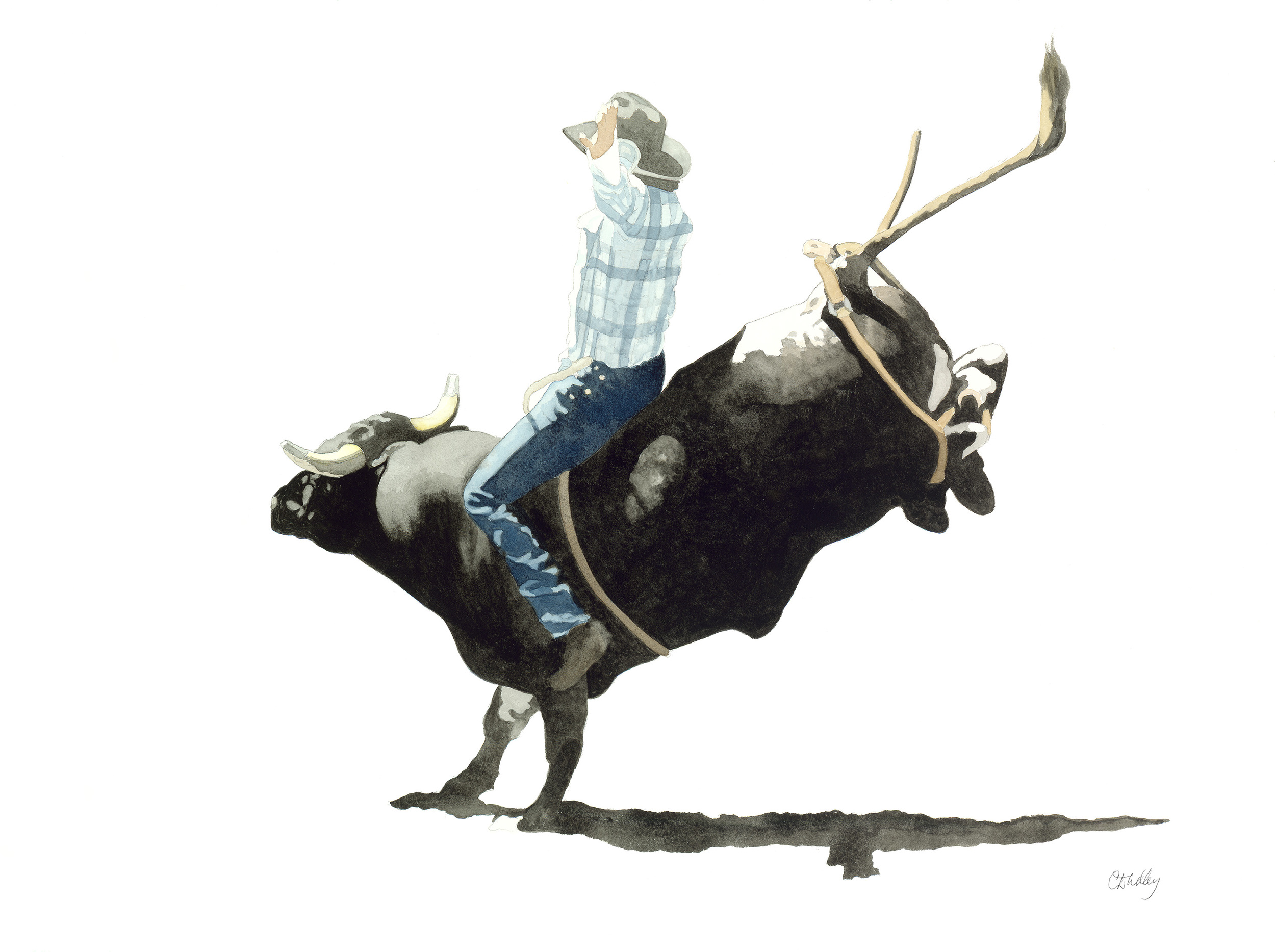 Rodeo Scenes   #2