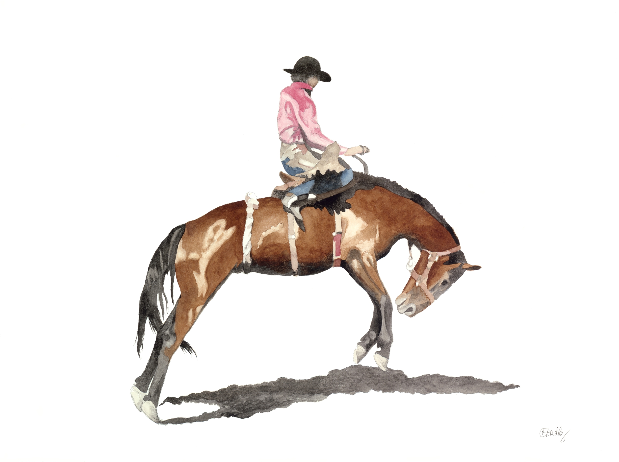 Rodeo Scenes   #10