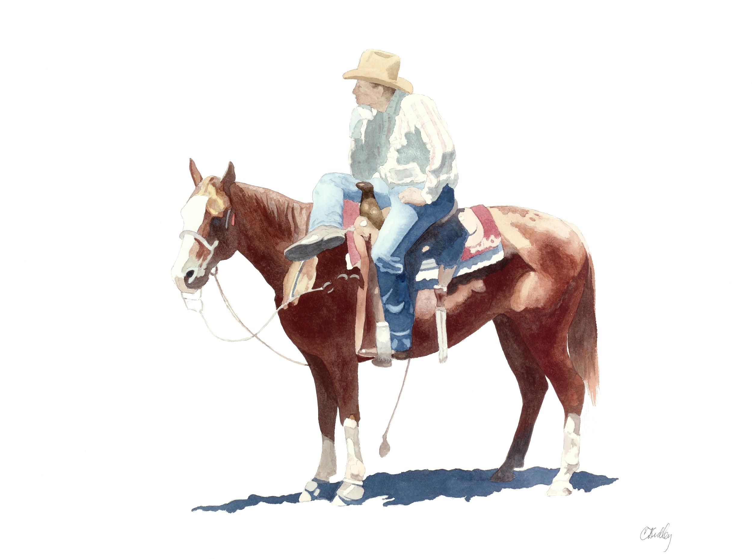 Rodeo Scenes   #11