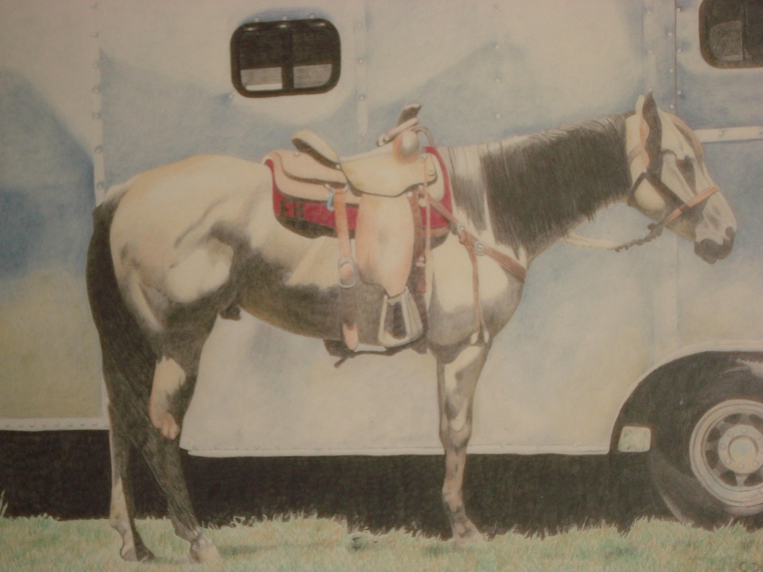 Rodeo Scenes   #13