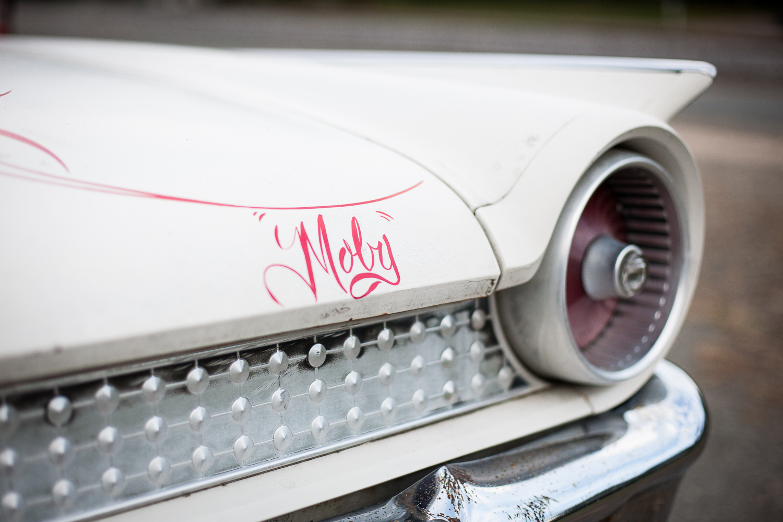 moby-1.jpg