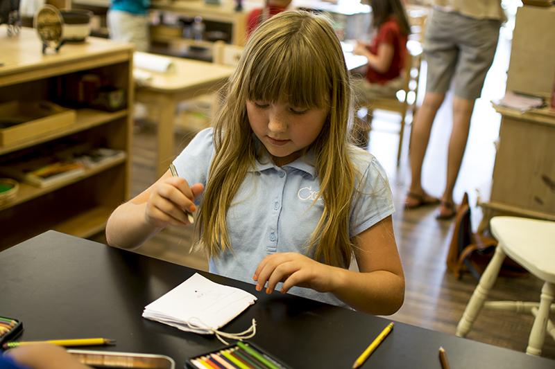 Scientific Notebook making