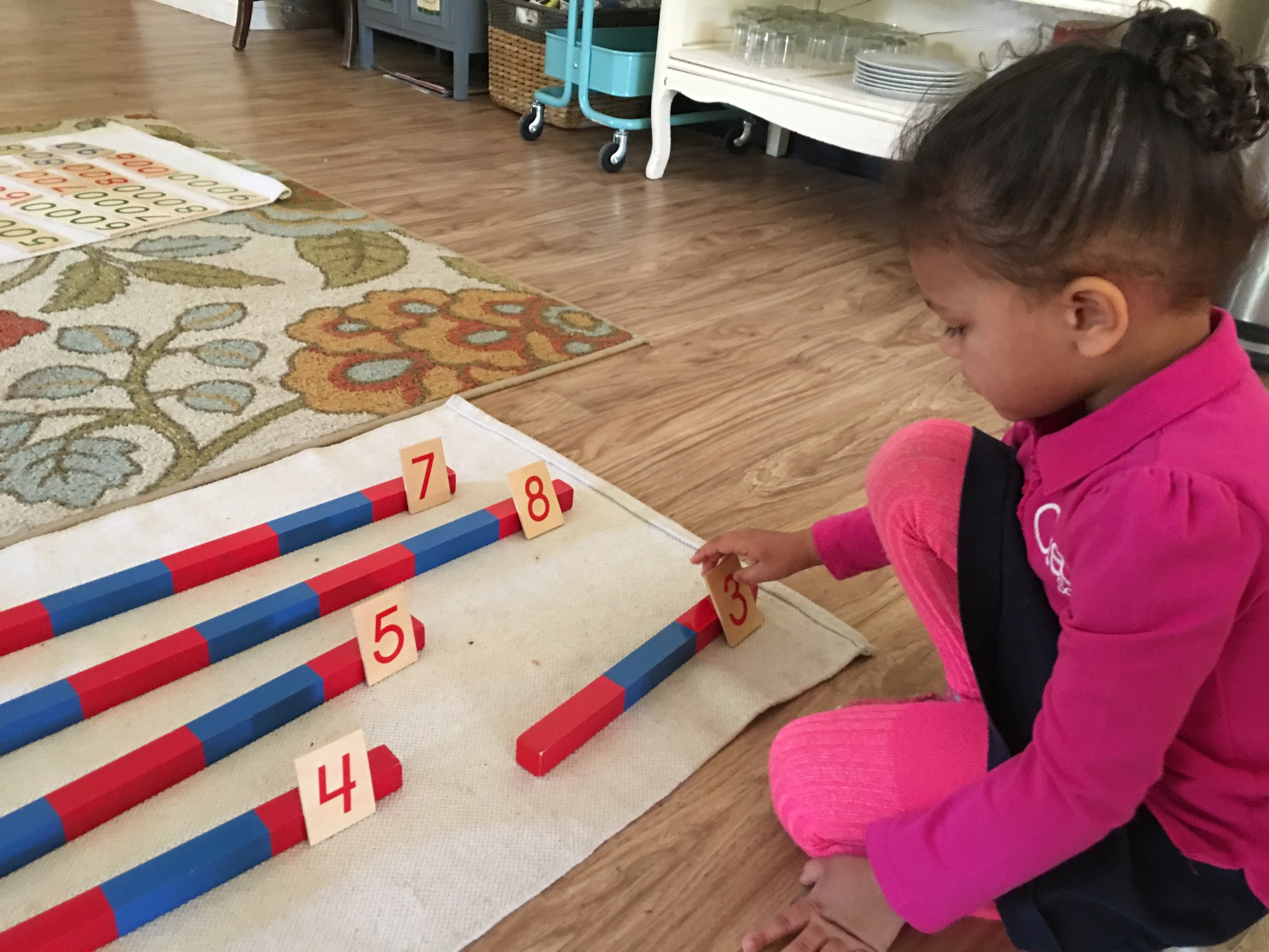 Number Rods with Cards