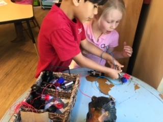 Collaborative Experiments
