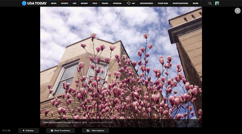 usatoday_spring.jpg