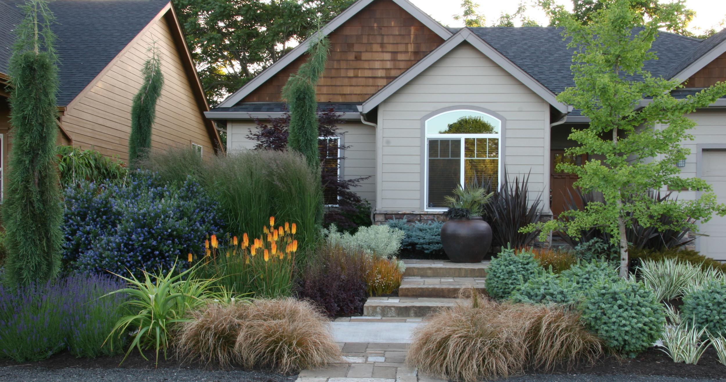 orange flowers suburban yard design