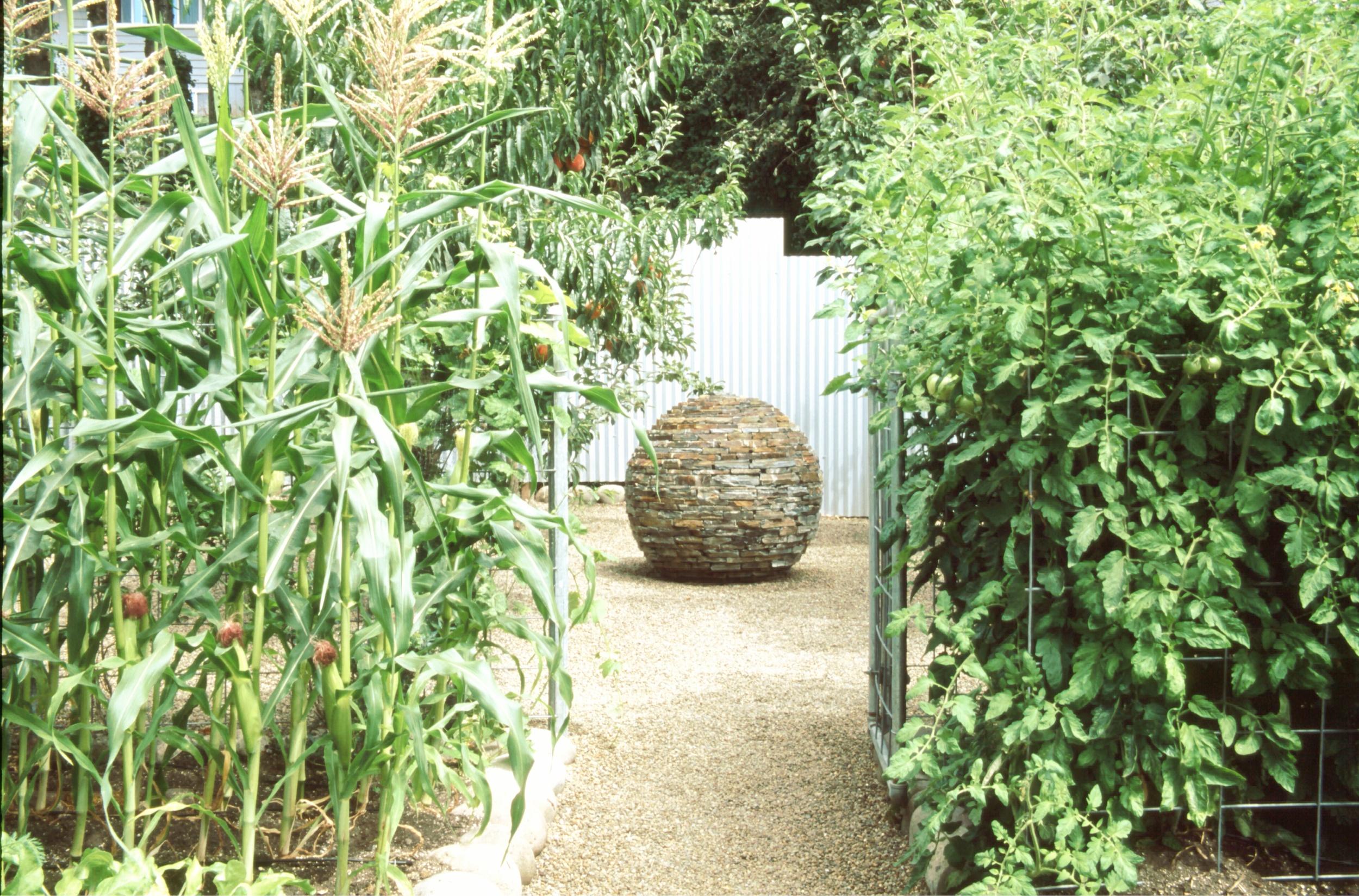 Our vegetable garden, circa 2004. Photo courtesy of Robin Bachtler Cushman