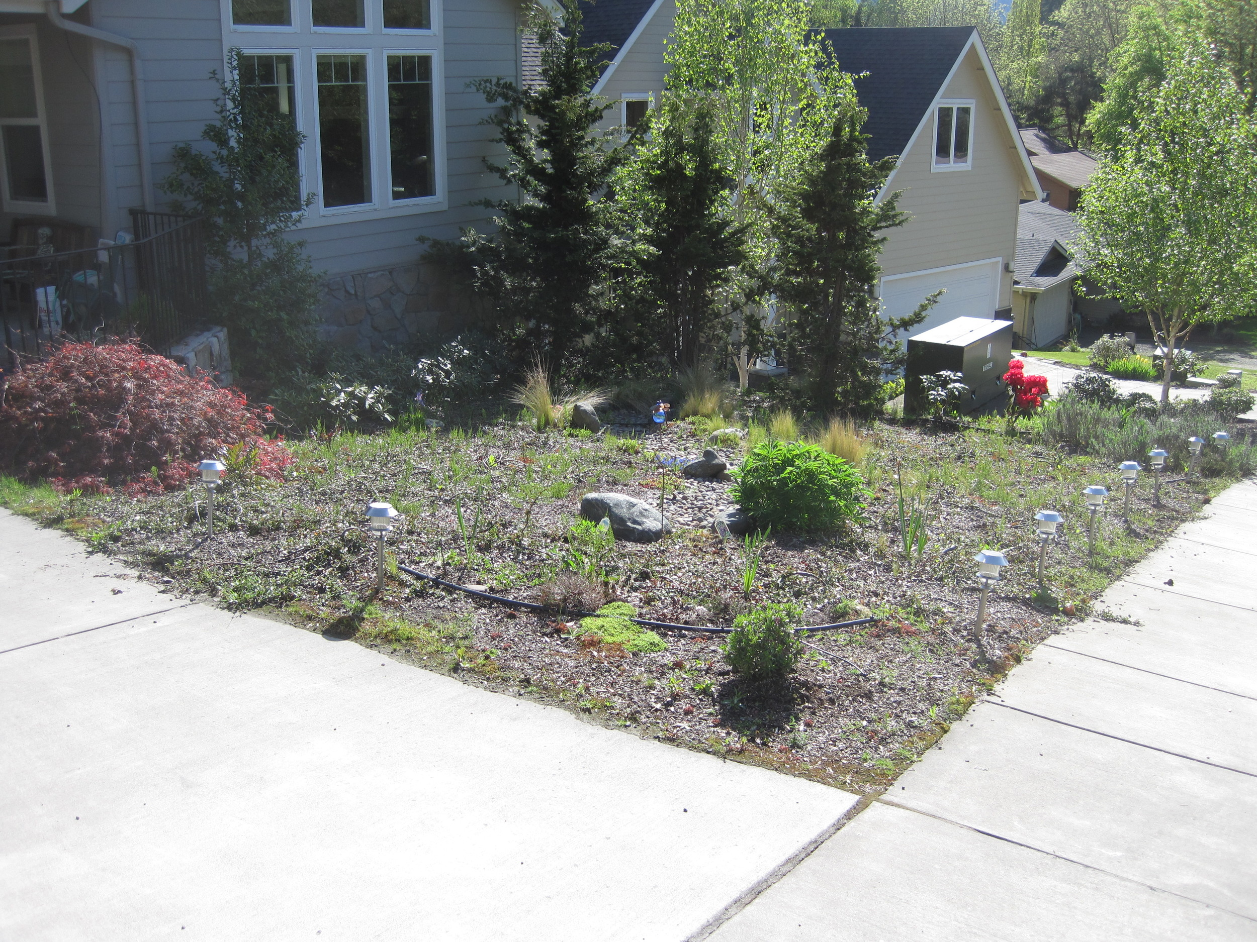 Before: a lack of height and interest made the planting bed feel both cramped and exposed.