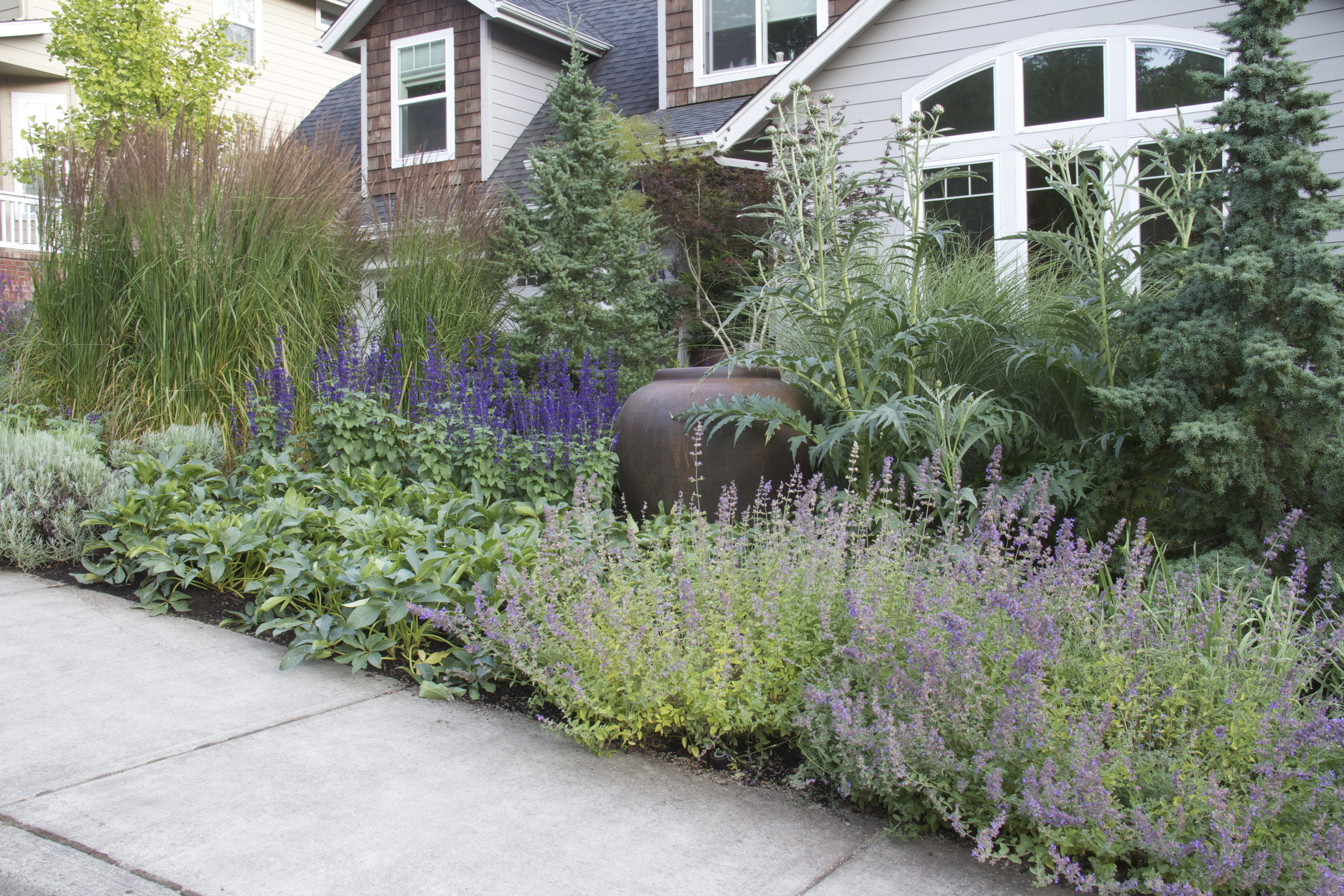 After: informal, breezy plantings wrap the house in layers of texture and color.