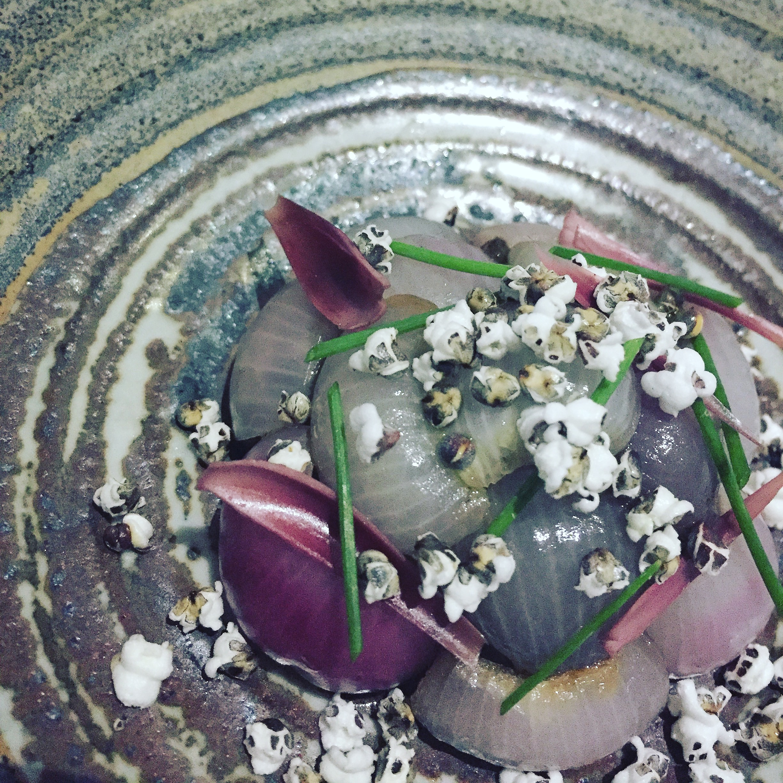 """Alliums & sorghum"""