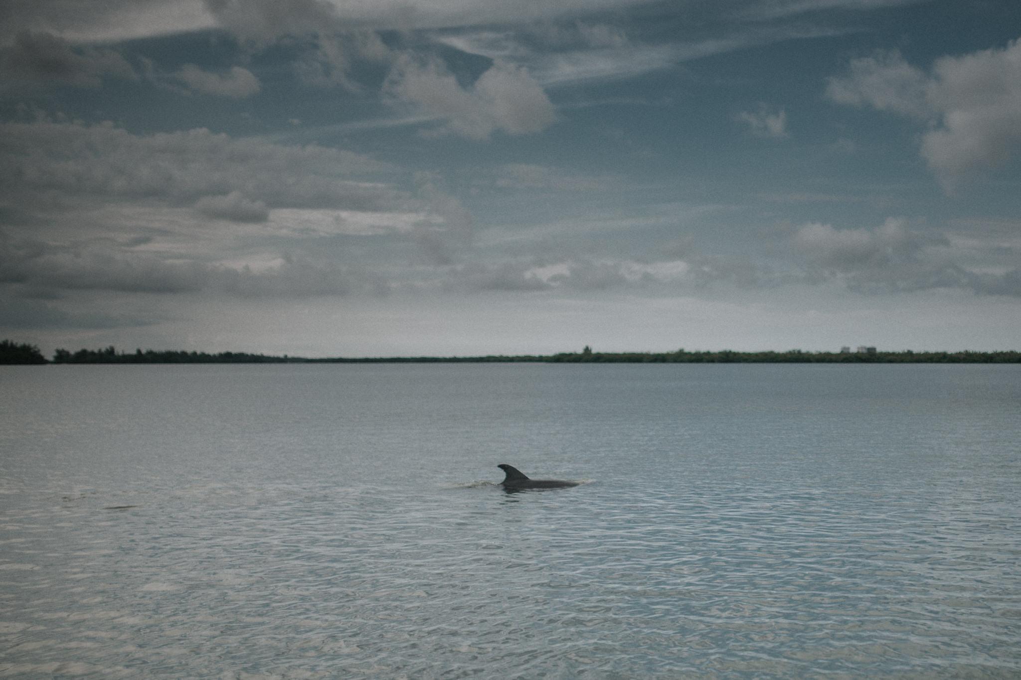 twyla jones photography - treasure coast florida - island family session-4459.jpg